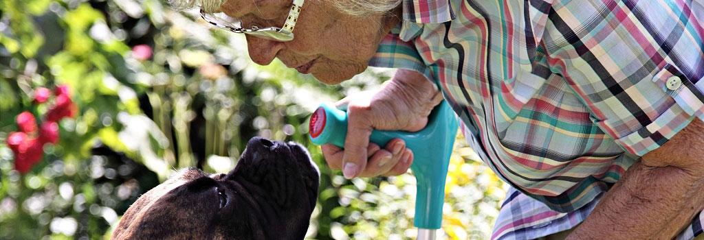 Soziale Dienstleistungen - Initiative Zuhause leben